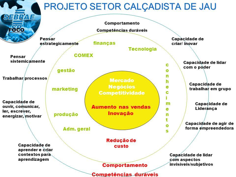 PROJETO SETOR CALÇADISTA DE JAU FOCO Mercado Negócios Competitividade Aumento nas vendas Inovação Comportamento Competências duráveis Comportamento Co