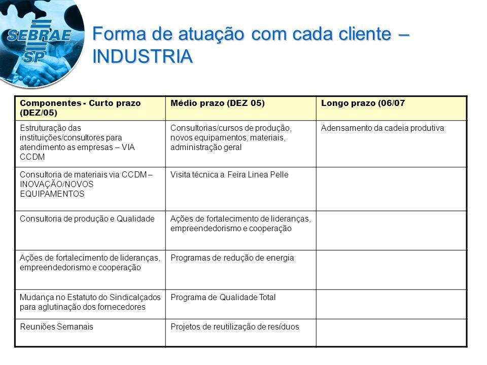 Componentes - Curto prazo (DEZ/05) Médio prazo (DEZ 05)Longo prazo (06/07 Estruturação das instituições/consultores para atendimento as empresas – VIA