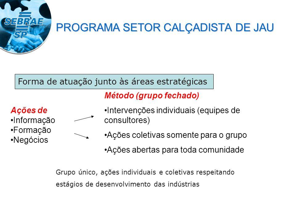 Ações de Informação Formação Negócios Método (grupo fechado) Intervenções individuais (equipes de consultores) Ações coletivas somente para o grupo Aç