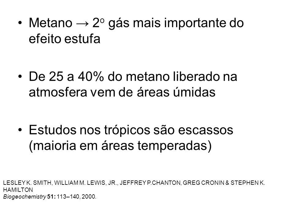 Metano 2 o gás mais importante do efeito estufa De 25 a 40% do metano liberado na atmosfera vem de áreas úmidas Estudos nos trópicos são escassos (mai