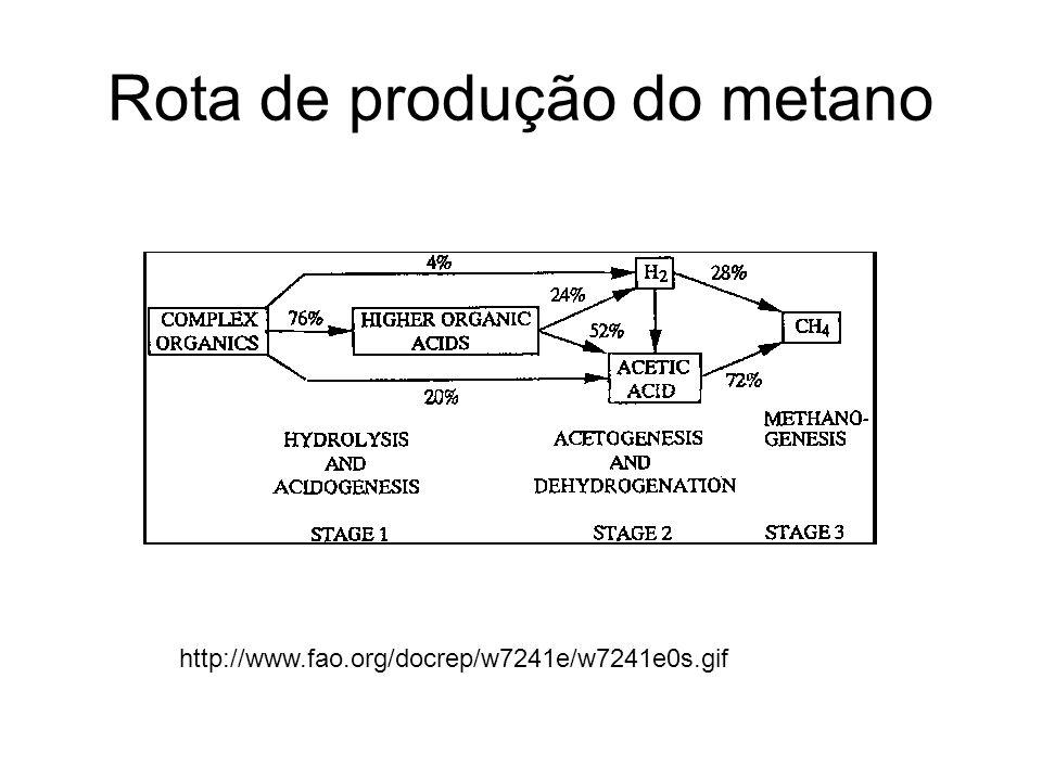 Rota de produção do metano http://www.fao.org/docrep/w7241e/w7241e0s.gif