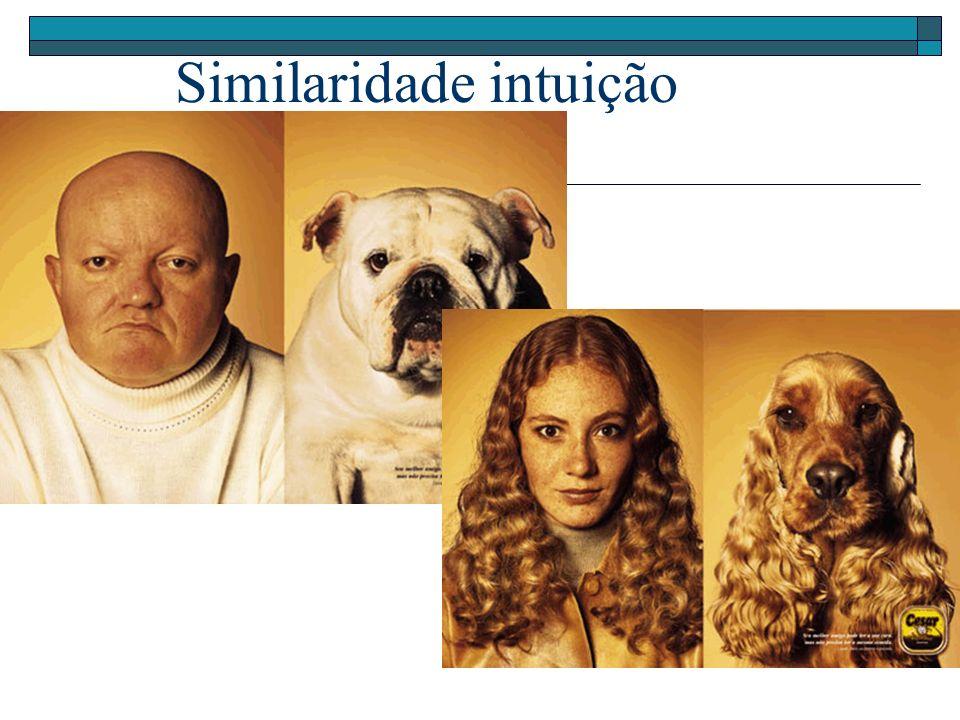 Imagem Vetores de Características Pre-processing Imagem Processada Extração de Características Extração de características