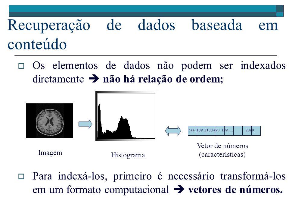 Consultas por similaridade são efetuadas em domínios de dados complexos, usando-se vetores de características; Vetores de características, cujos elementos podem ser tratados como coordenadas de pontos no espaço n-dimensional: x = (x 1, x 2,..., x n ) Consultas por Similaridade