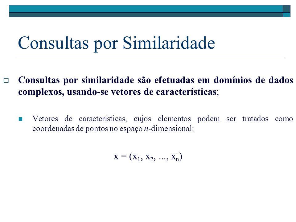 Os elementos retornados em uma consulta por similaridade são definidos baseando-se em uma função distância Dado S, um espaço de características d: S X S R+ A função distância, também denominada métrica, calcula a distância entre dois objetos e retorna um valor numérico Quanto menor o valor retornado, mais similares são os objetos Note que a idéia de função distância também se aplica a dados com dimensões indefinidas ou adimensionais, exemplo: grafos de impressões digitais Consultas por Similaridade
