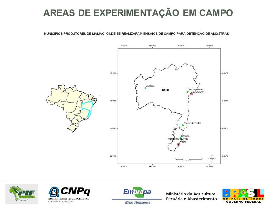 Conselho Nacional de Desenvolvimento Científico e Tecnológico AREAS DE EXPERIMENTAÇÃO EM CAMPO