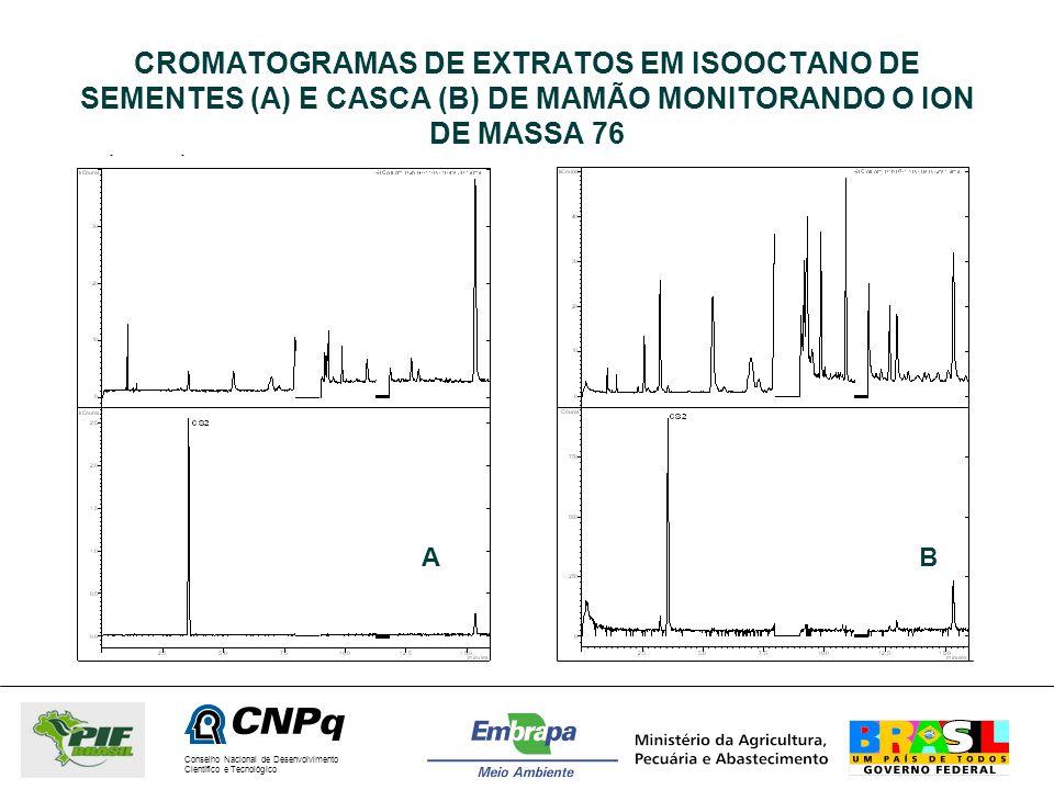 Conselho Nacional de Desenvolvimento Científico e Tecnológico CROMATOGRAMAS DE EXTRATOS EM ISOOCTANO DE SEMENTES (A) E CASCA (B) DE MAMÃO MONITORANDO