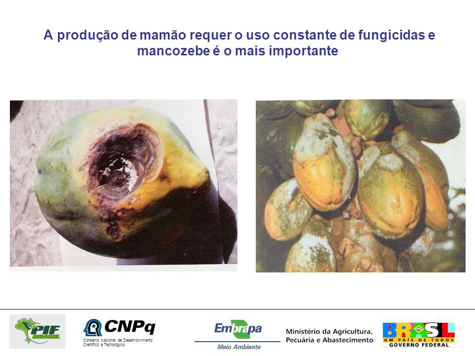 Conselho Nacional de Desenvolvimento Científico e Tecnológico A produção de mamão requer o uso constante de fungicidas e mancozebe é o mais importante