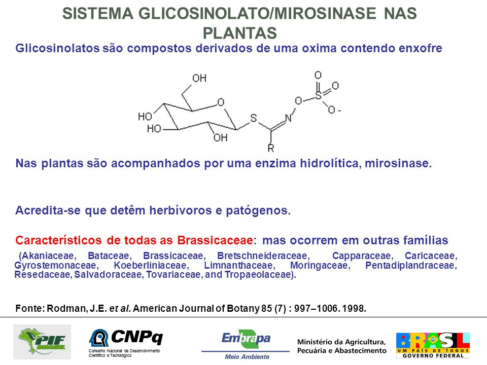 Conselho Nacional de Desenvolvimento Científico e Tecnológico FORMAÇÃO DE NITRILA E ISOTIOCIANATO A PARTIR DE GLICOSINOLATOS Danos aos tecidos da planta ativam a enzima mirosinase que hidrolisa o glicosinolato Um intermediário instável perde sulfato e sofre rearranjo não enzimático para ITC, TC ou Nitrila Nitrila é favorecida a baixo pH e em meio neutro é favorecida a formação de isotiocianato Esses produtos de degradação dos glucosinolatos funcionam como aleloquímicos na proteção das plantas.