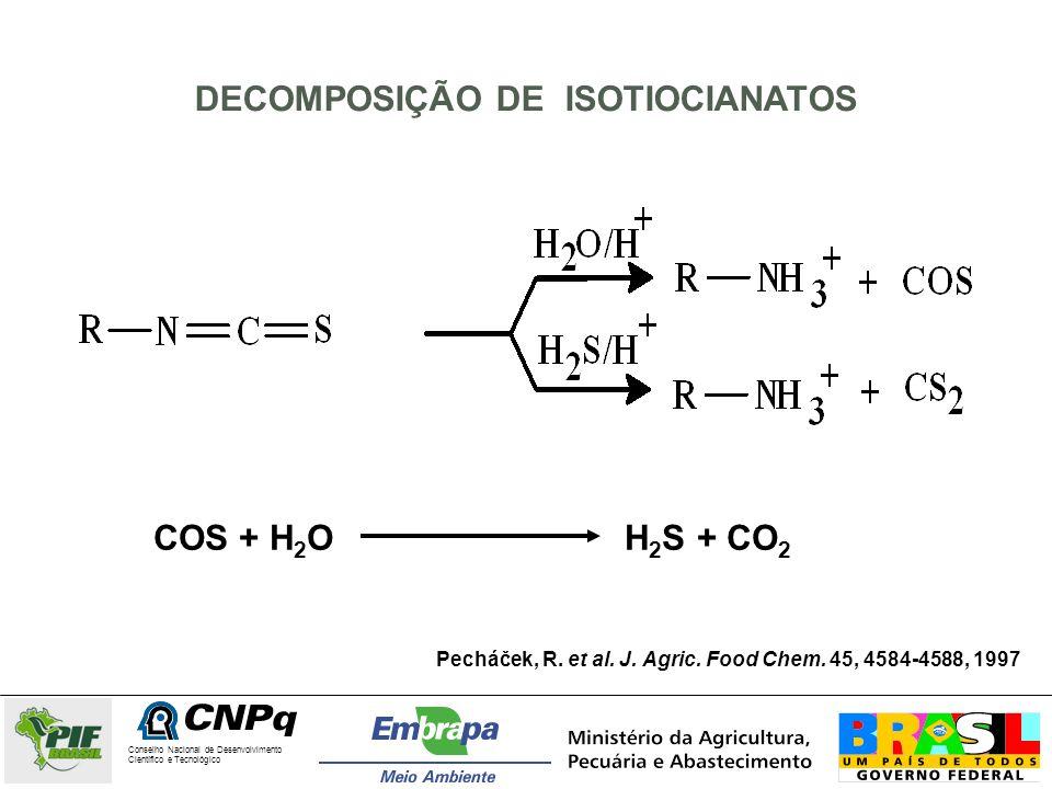 Conselho Nacional de Desenvolvimento Científico e Tecnológico COMPOSTOS SULFURADOS IDENTIFICADOS NAS FRAÇÕES DE MAMÃO CONTROLE DA CULTIVAR GOLDEN CompostosTempo de retenção* (min) Sementes 1Sementes 2Casca 1 Casca 2 sulfeto de carbonila1.271.26- dimetil sulfeto3.153.12-3.163.063.06-3.13 dissulfeto de carbono3.603.573.513.57 2-metiltiofeno9.33-9.349.33-9.27 3-metiltiofeno9.35-9.379.35-- 2-etiltiofeno11.72--11.83 3-etiltiofeno11.8511.8811.69-11.8511.78-11.81 benzonitrila**15.3515.3915.4515.34 benzilisotiocianato19.9919.8720.93- benziltiocianato27.87 27.9427.83