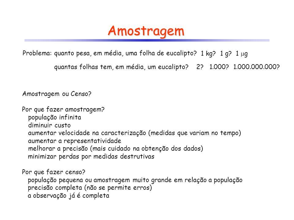 Amostragem Problema: quanto pesa, em média, uma folha de eucalipto? Amostragem ou Censo? Por que fazer amostragem? população infinita diminuir custo a