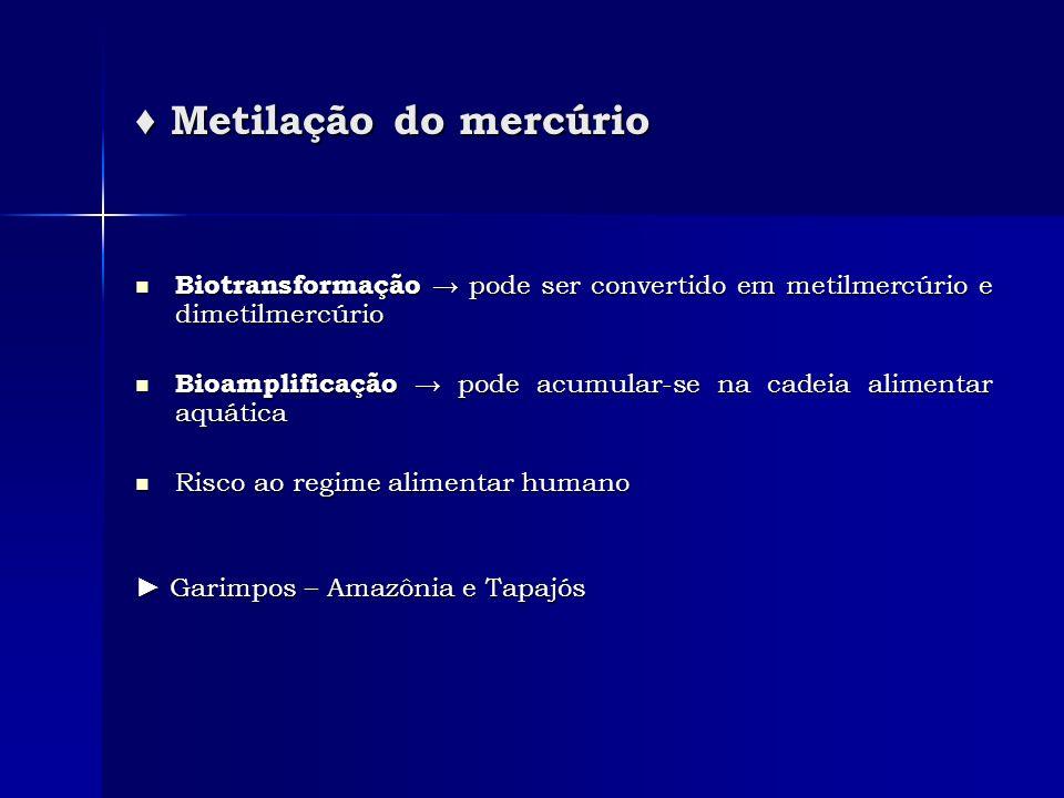Metilação do mercúrio Metilação do mercúrio Biotransformação pode ser convertido em metilmercúrio e dimetilmercúrio Biotransformação pode ser converti