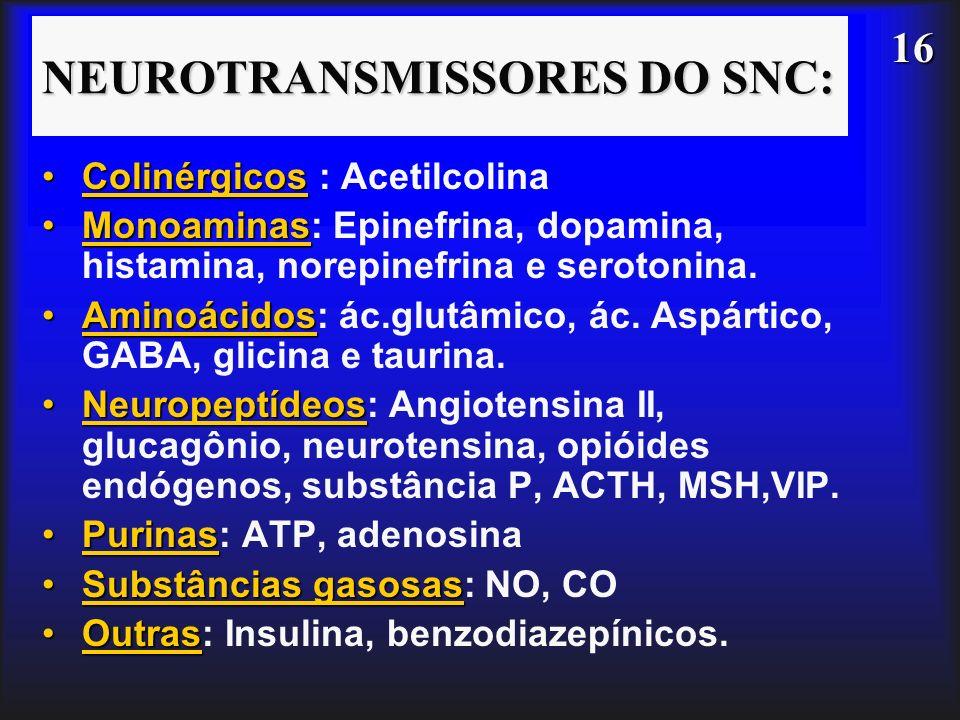16 NEUROTRANSMISSORES DO SNC: ColinérgicosColinérgicos : Acetilcolina MonoaminasMonoaminas: Epinefrina, dopamina, histamina, norepinefrina e serotonin