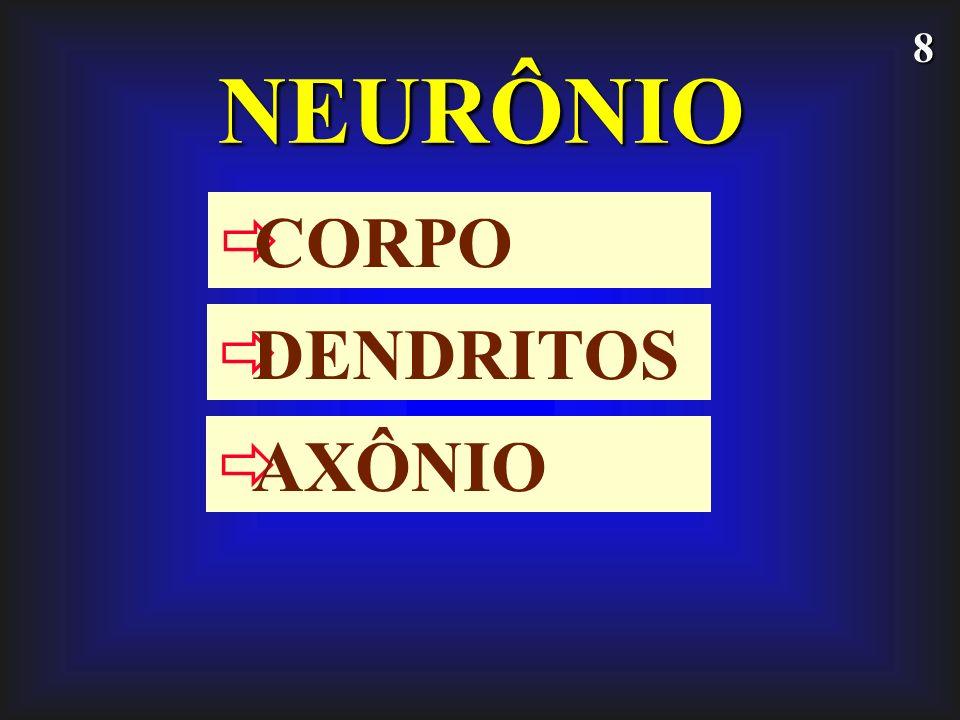 19 NEUROFÁRMACOS interferem no processo de síntese, armazenamento, recaptação intraneuronal e intravesicular, biotransformação e liberação de neurotransmissores.