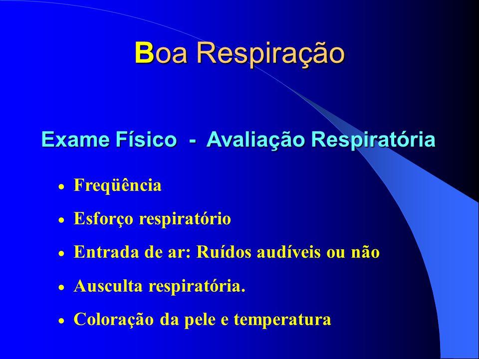Boa Respiração Freqüência Esforço respiratório Entrada de ar: Ruídos audíveis ou não Ausculta respiratória. Coloração da pele e temperatura Exame Físi