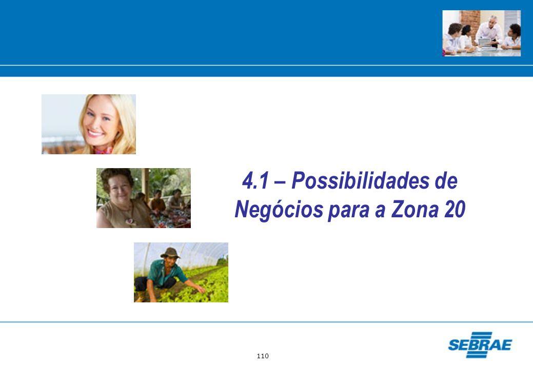 110 4.1 – Possibilidades de Negócios para a Zona 20