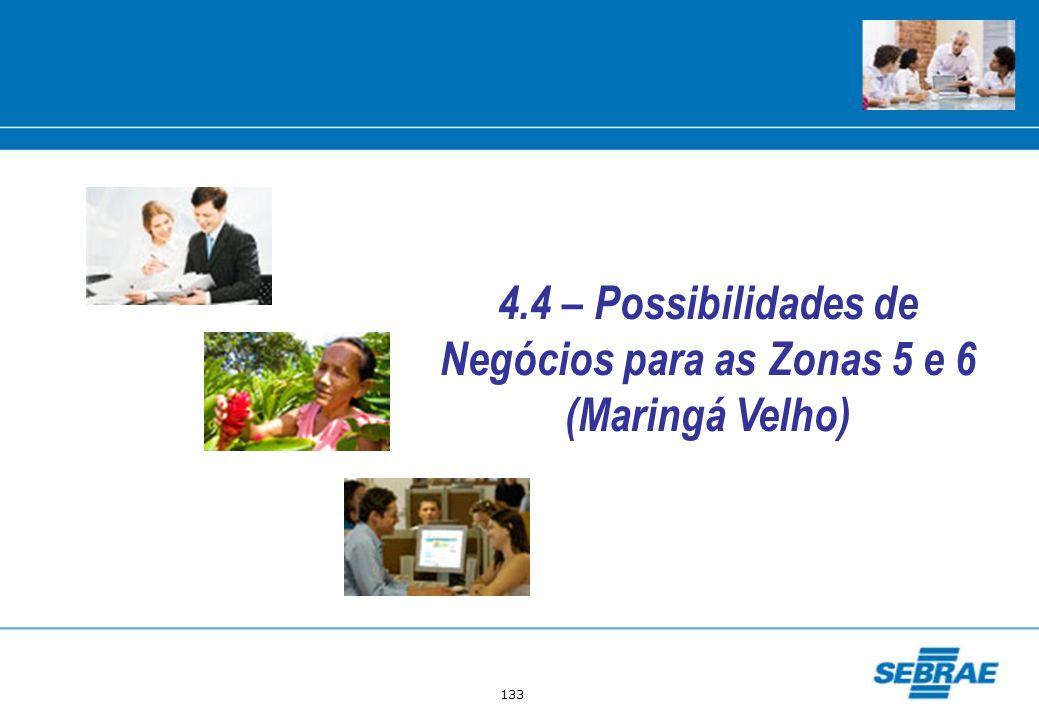133 4.4 – Possibilidades de Negócios para as Zonas 5 e 6 (Maringá Velho)