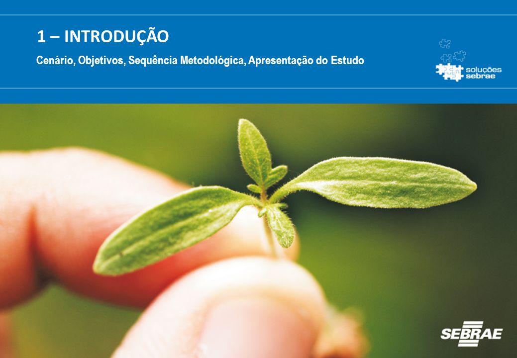 3 Cenário O empreendedorismo é um fator determinante para o progresso econômico de uma região.