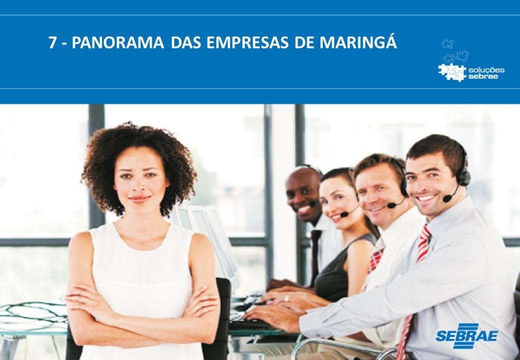 7 - PANORAMA DAS EMPRESAS DE MARINGÁ
