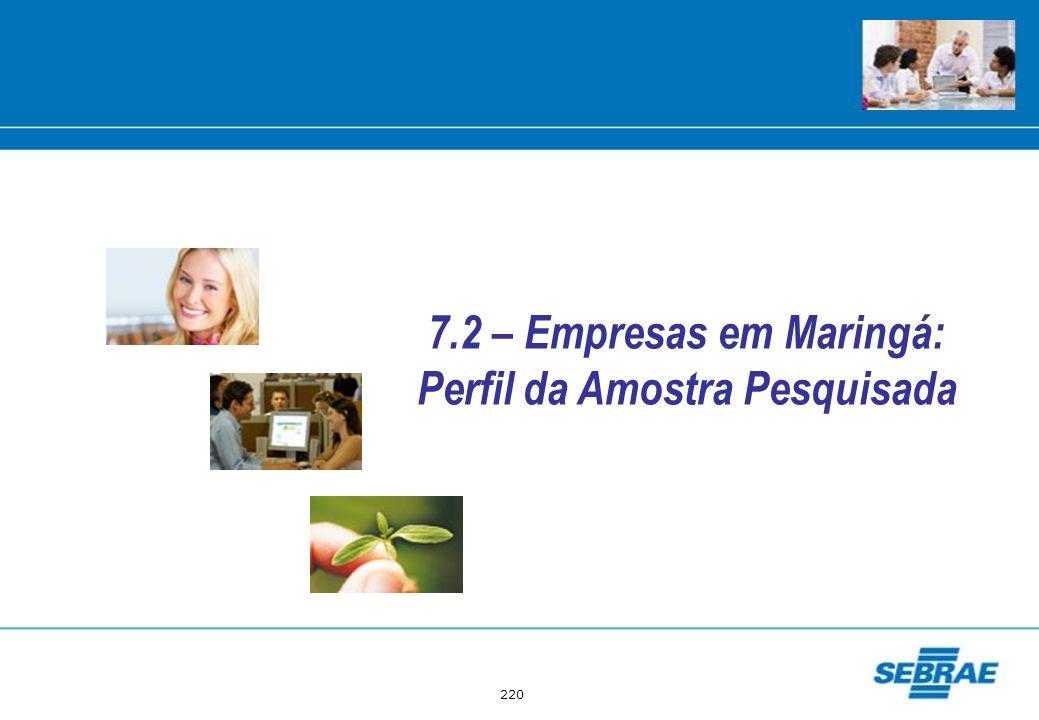 220 7.2 – Empresas em Maringá: Perfil da Amostra Pesquisada
