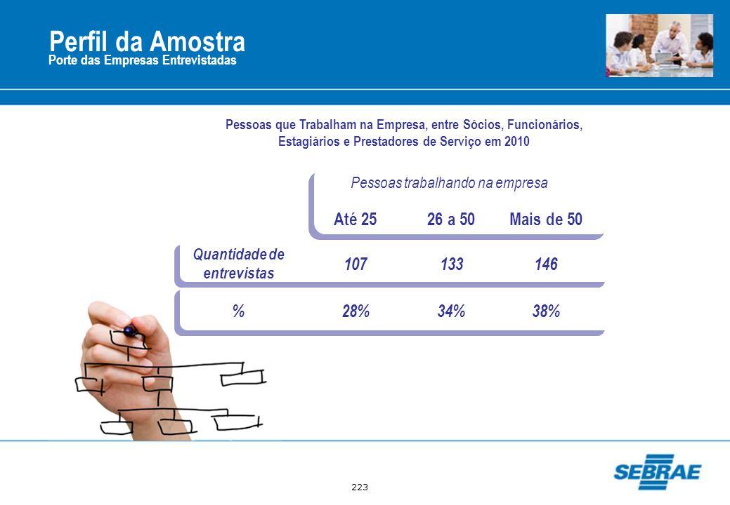 223 Porte das Empresas Entrevistadas Pessoas que Trabalham na Empresa, entre Sócios, Funcionários, Estagiários e Prestadores de Serviço em 2010 Pessoa