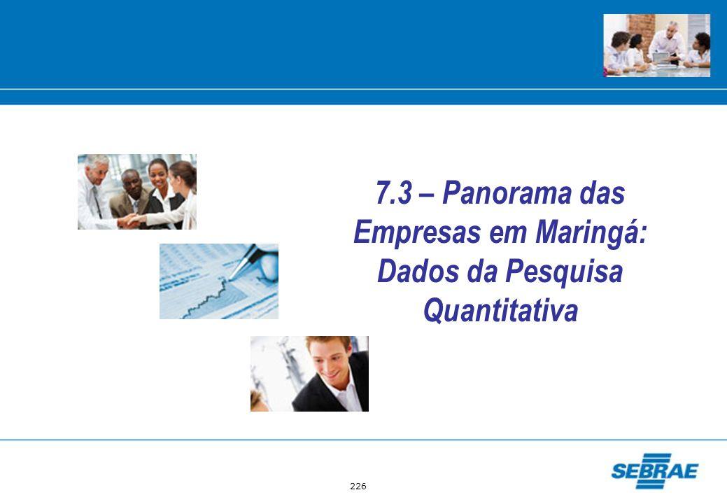 226 7.3 – Panorama das Empresas em Maringá: Dados da Pesquisa Quantitativa
