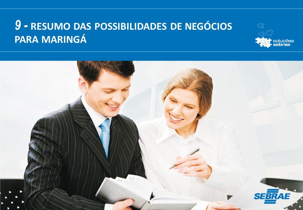 9 - RESUMO DAS POSSIBILIDADES DE NEGÓCIOS PARA MARINGÁ