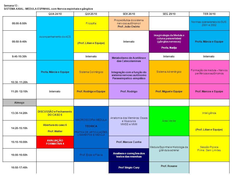 Semana 13 - SISTEMA AXIAL- MEDULA ESPINHAL com Nervos espinhais e gânglios QUA 24/10QUI 25/10SEX 26/10SEG 29/10TER 30/10 08:00-8:50h Acompanhamento do