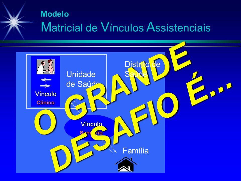 Modelo M atricial de V ínculos A ssistenciais Vínculo Clínico Unidade de Saúde Vínculo Sanitário Família O GRANDE DESAFIO É... Distrito de Saúde