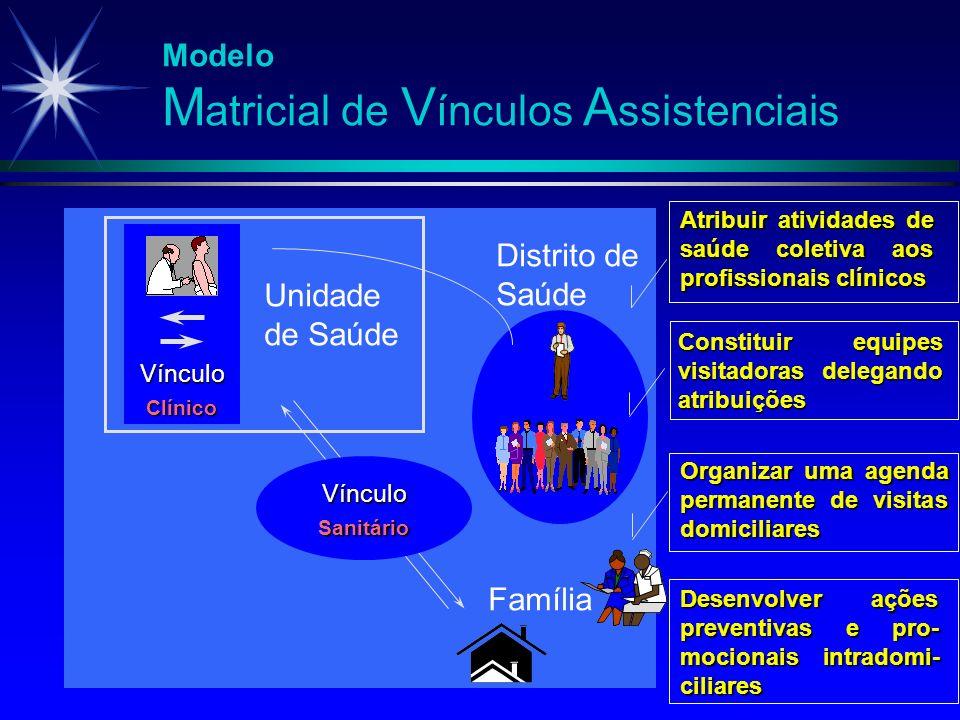 Desenvolver ações preventivas e pro- mocionais intradomi- ciliares Constituir equipes visitadoras delegando atribuições Atribuir atividades de saúde c