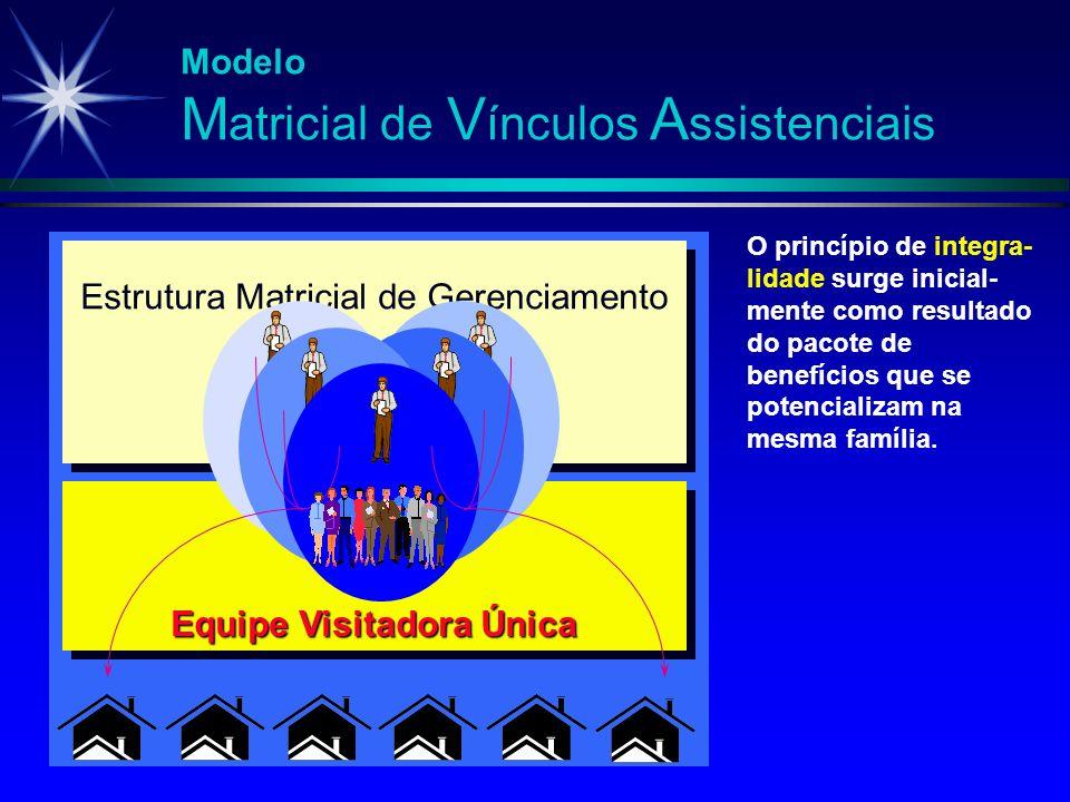 Estrutura Matricial de Gerenciamento Equipe Visitadora Única Modelo M atricial de V ínculos A ssistenciais O princípio de integra- lidade surge inicia