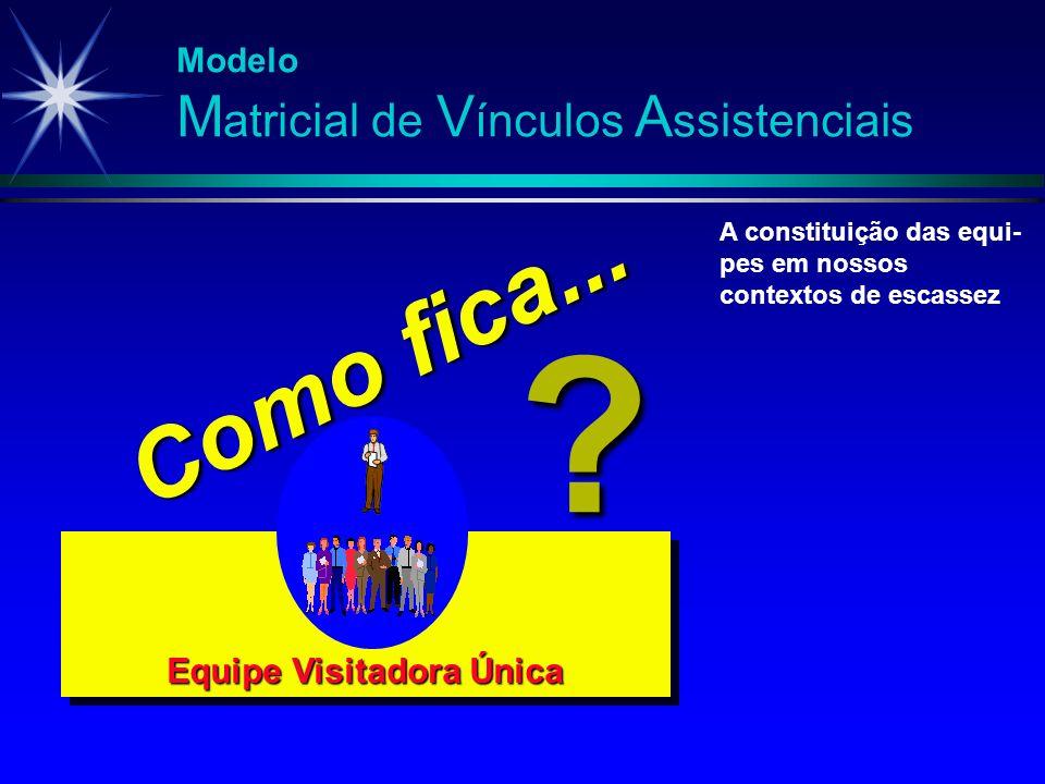 Equipe Visitadora Única A constituição das equi- pes em nossos contextos de escassez ? Como fica...