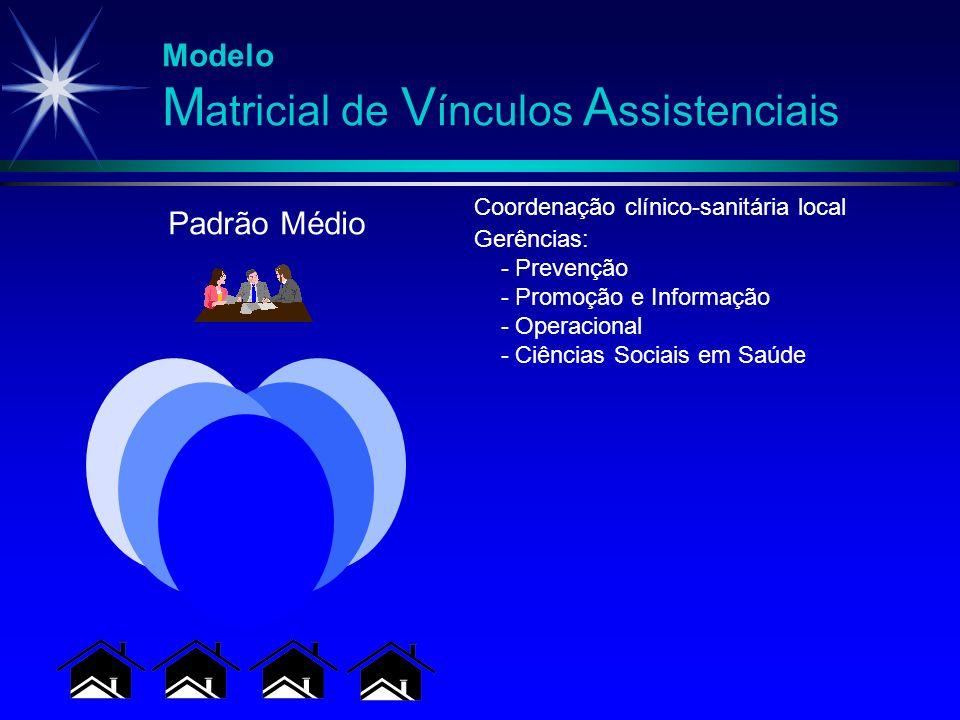 Modelo M atricial de V ínculos A ssistenciais Gerências: - Prevenção - Promoção e Informação - Operacional - Ciências Sociais em Saúde Padrão Médio Co