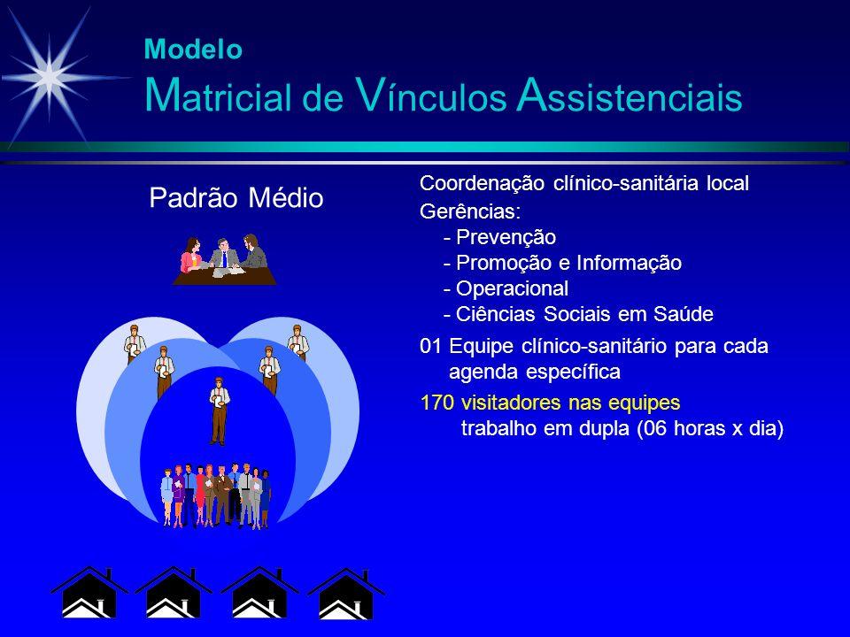 Modelo M atricial de V ínculos A ssistenciais 170 visitadores nas equipes trabalho em dupla (06 horas x dia) 01 Equipe clínico-sanitário para cada age