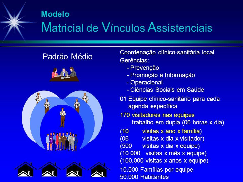 Modelo M atricial de V ínculos A ssistenciais (10 visitas x ano x família) (06 visitas x dia x visitador) (500 visitas x dia x equipe) (10.000 visitas