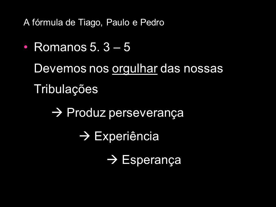 Romanos 5. 3 – 5 Devemos nos orgulhar das nossas Tribulações Produz perseverança Experiência Esperança A fórmula de Tiago, Paulo e Pedro