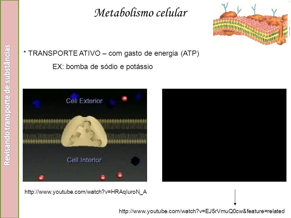 * TRANSPORTE ATIVO – com gasto de energia (ATP) EX: bomba de sódio e potássio http://www.youtube.com/watch?v=HRAqIuroN_A http://www.youtube.com/watch?