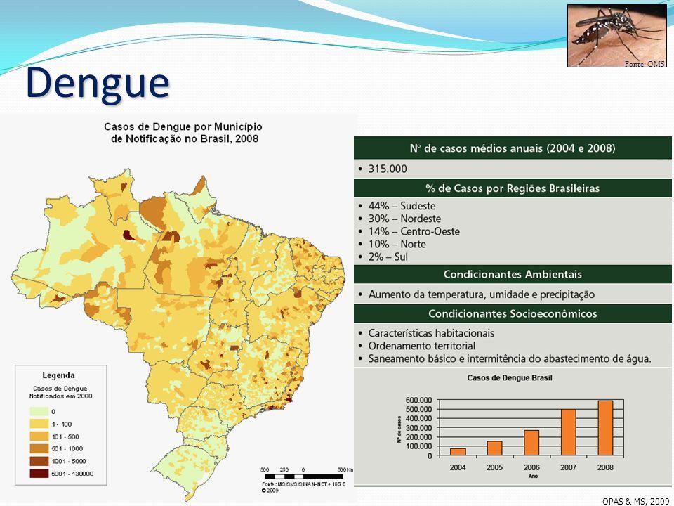 Dengue Fonte: OMS OPAS & MS, 2009