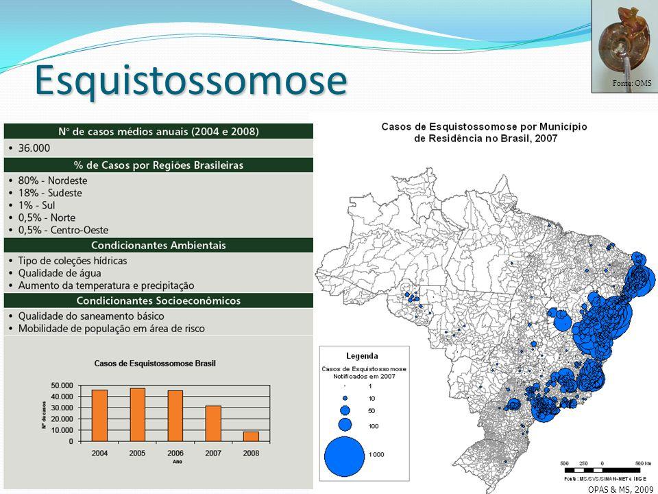 Esquistossomose Fonte: OMS OPAS & MS, 2009