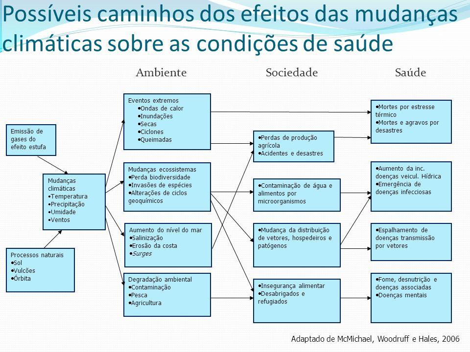 Hepatites Virais OPAS & MS, 2009