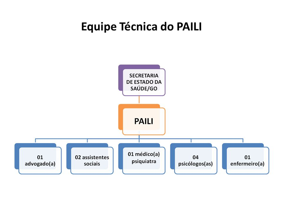 Equipe Técnica do PAILI