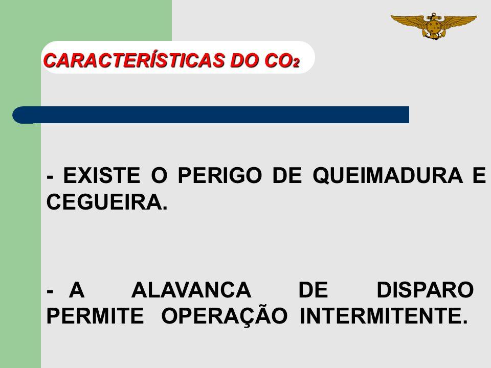CARACTERÍSTICAS DO CO 2 - AMBIENTE CONFINADO REDUZ O 2 - CILINDRO DE AÇO SEM COSTURA