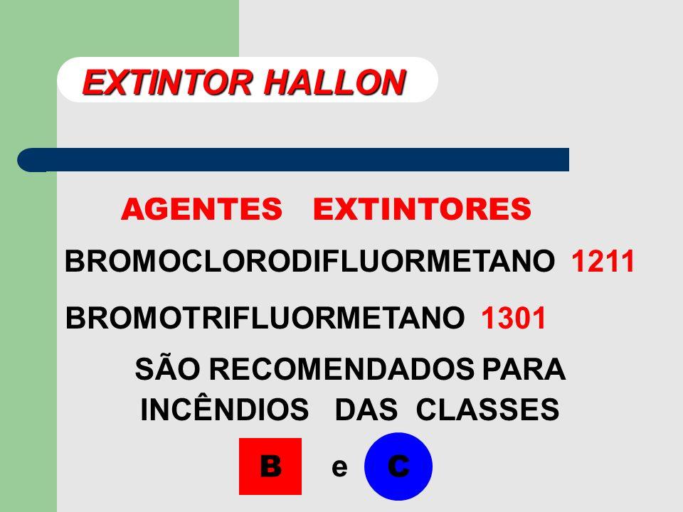 EXTINTOR HALLON