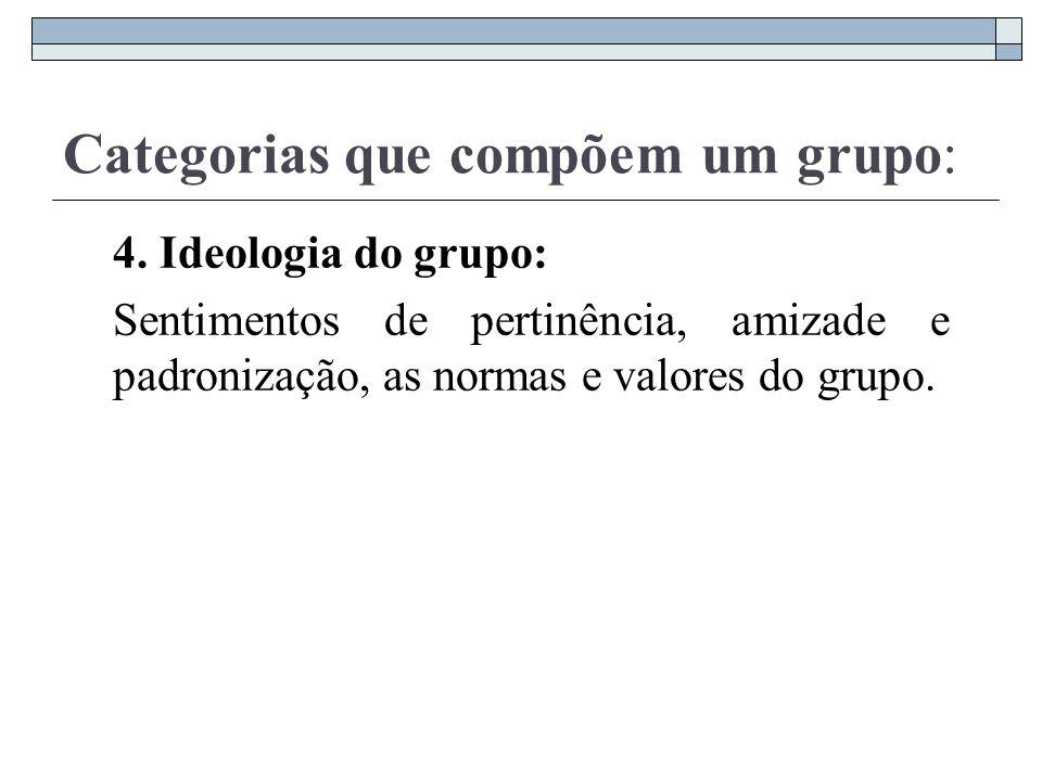Categorias que compõem um grupo: 4. Ideologia do grupo: Sentimentos de pertinência, amizade e padronização, as normas e valores do grupo.