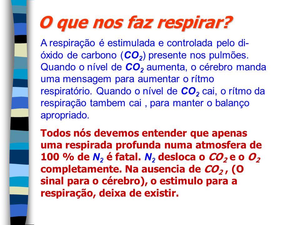 O que nos faz respirar? A respiração é estimulada e controlada pelo di- óxido de carbono (CO 2 ) presente nos pulmões. Quando o nível de CO 2 aumenta,