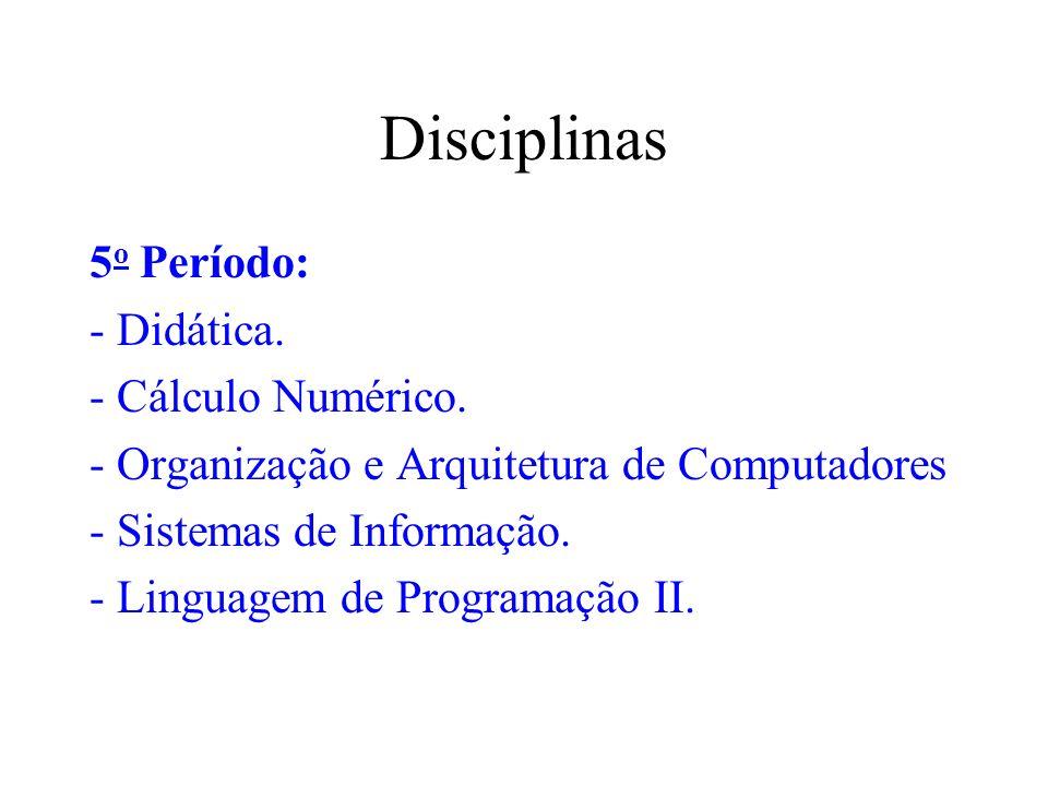 Disciplinas 5 o Período: - Didática. - Cálculo Numérico. - Organização e Arquitetura de Computadores - Sistemas de Informação. - Linguagem de Programa