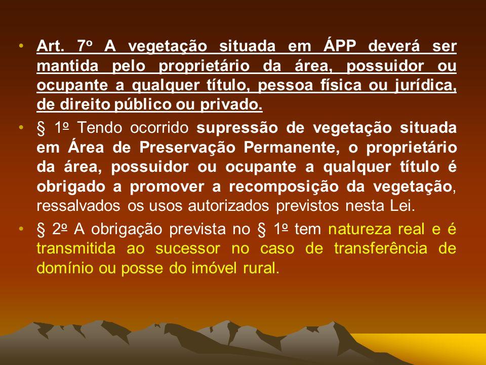 Art. 7 o A vegetação situada em ÁPP deverá ser mantida pelo proprietário da área, possuidor ou ocupante a qualquer título, pessoa física ou jurídica,