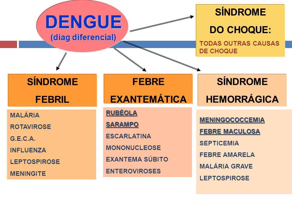 MENINGOCOCCEMIA FEBRE MACULOSA SEPTICEMIA FEBRE AMARELA MALÁRIA GRAVE LEPTOSPIROSE DENGUE (diag diferencial) SÍNDROME FEBRIL FEBRE EXANTEMÁTICA SÍNDRO