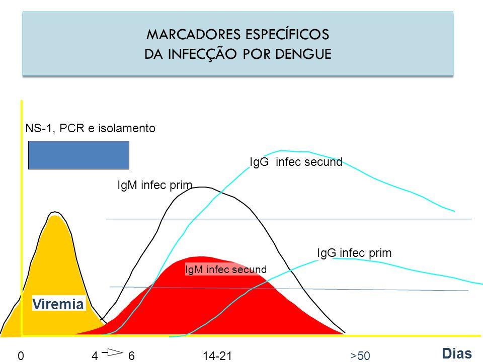 Viremia IgM infec secund IgG infec secund 0 46 14-21 >50 Dias MARCADORES ESPECÍFICOS DA INFECÇÃO POR DENGUE MARCADORES ESPECÍFICOS DA INFECÇÃO POR DEN