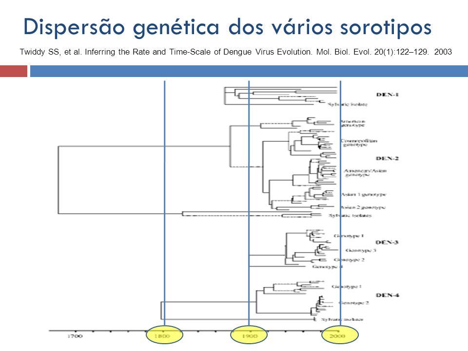 Dispersão genética dos vários sorotipos Twiddy SS, et al. Inferring the Rate and Time-Scale of Dengue Virus Evolution. Mol. Biol. Evol. 20(1):122–129.