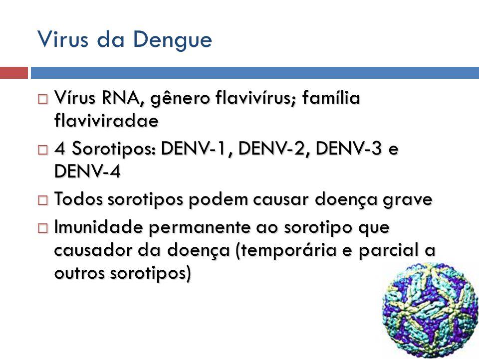 Virus da Dengue Vírus RNA, gênero flavivírus; família flaviviradae Vírus RNA, gênero flavivírus; família flaviviradae 4 Sorotipos: DENV-1, DENV-2, DEN